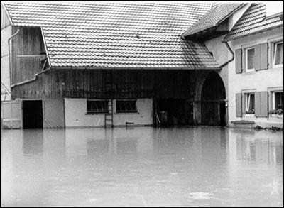Jahrhunderthochwasser - Koppengasse 13